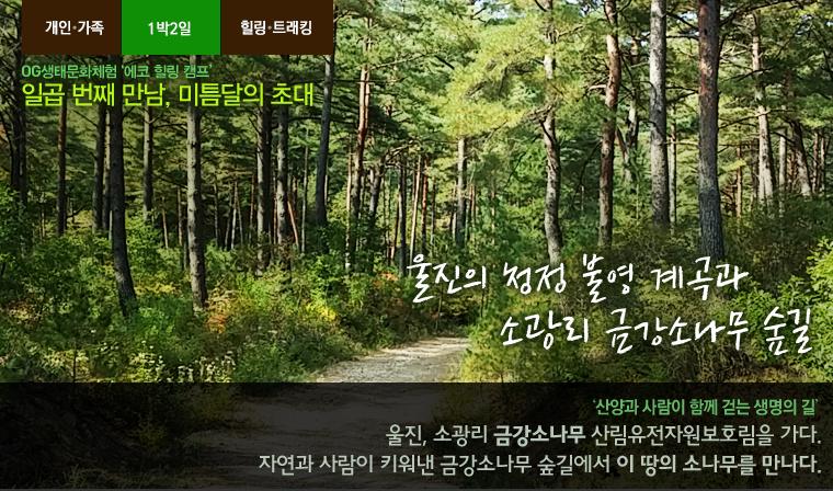 banner00_20131030152400001.jpg