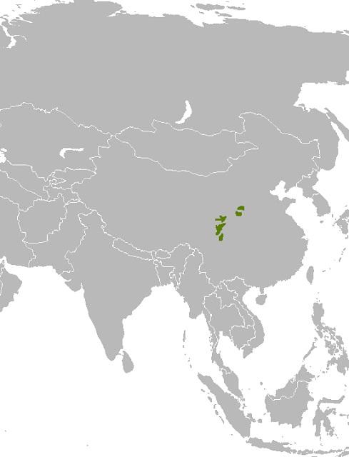 Mapa_distribuicao_Ailuropoda_melanoleuca.jpg