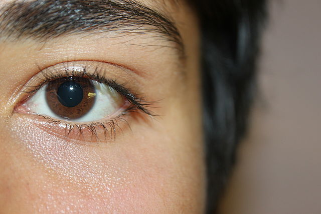 640px-A_sample_of_brown_eyes.jpg