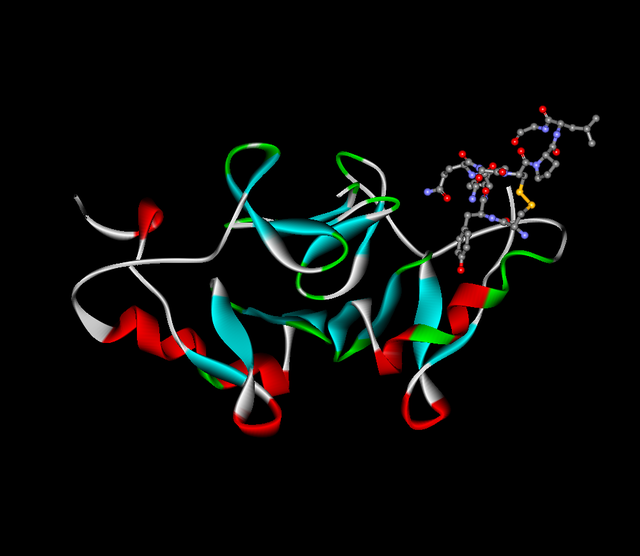 640px-Oxytocin-neurophysin.png