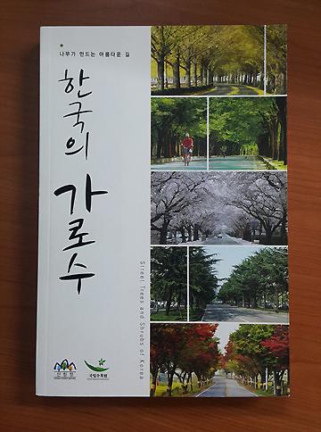 한국의 가로수.jpg