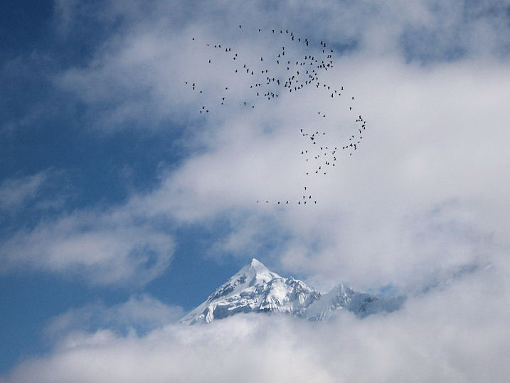 Andrew Purdam_above marpha_mustang region_nepal.jpg