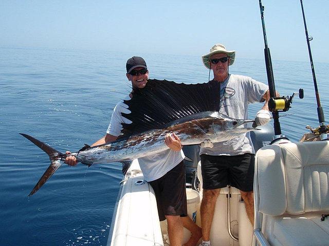 WIDTTF_640px-Two_men_holding_a_freshly_caught_sailfish.jpg