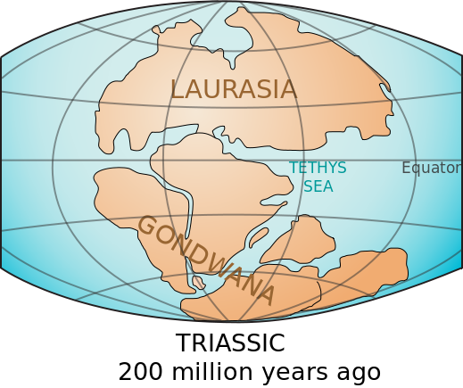 The continents Laurasia-Gondwana 200 million years ago.png