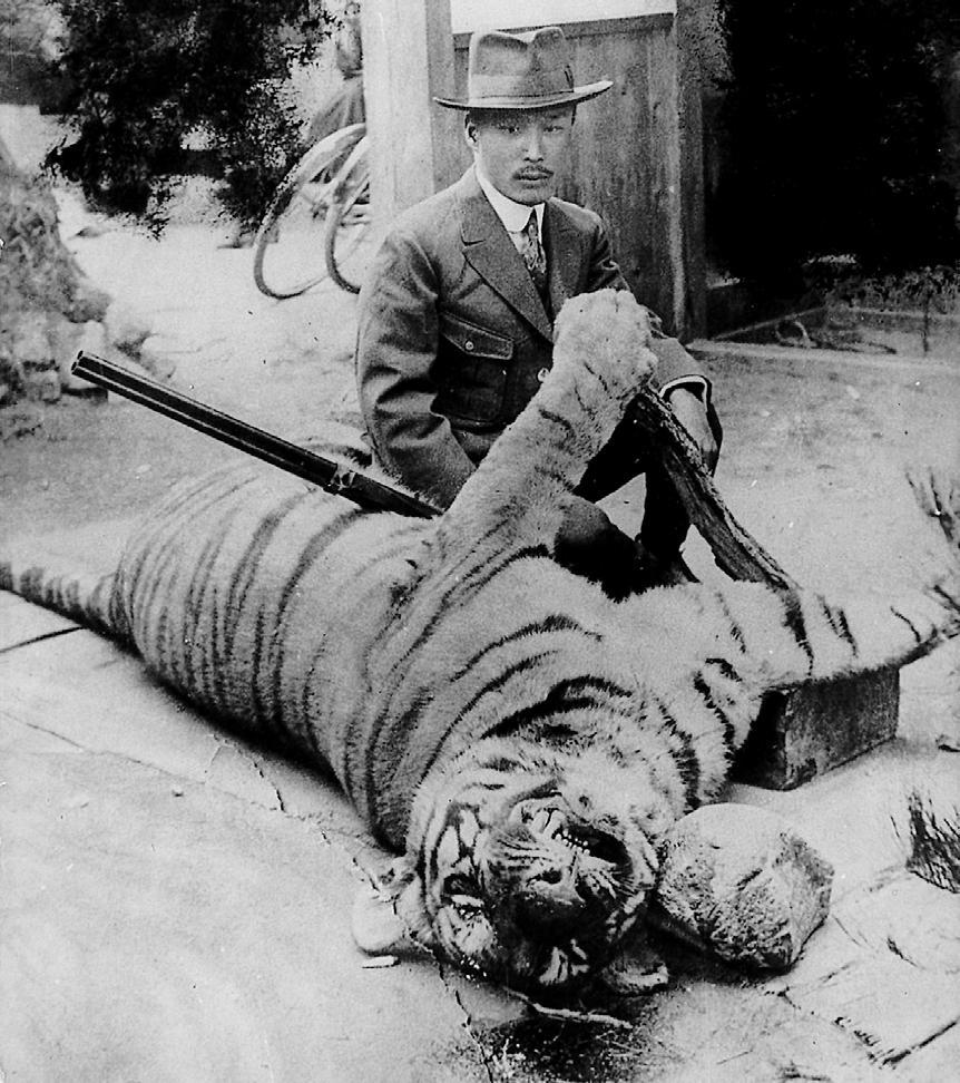 1921년 경주 대덕산에서 잡힌 한국호랑이_엔도 키미오 제공.JPG