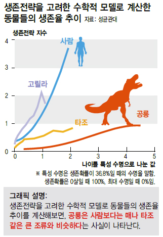 수학생존율.jpg