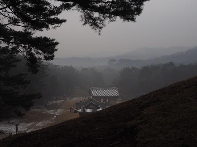 1건원릉에서 본 전경.jpg