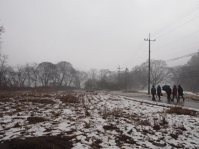 6마을 풍수에서 허한 곳을 숲으로 보충한 보룡리 수구막이숲.jpg