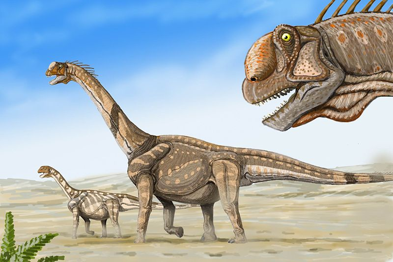 800px-Camarasaurs1_드리트리 보그다노프_위키.jpg