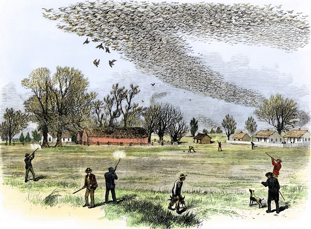 Depiction of a shooting in northern Louisiana, Smith Bennett, 1875-1.jpg