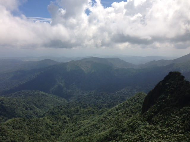 View_direction_Dos_Picachos_from_El_Pico_in_El_Yunque_National_Forest.JPG