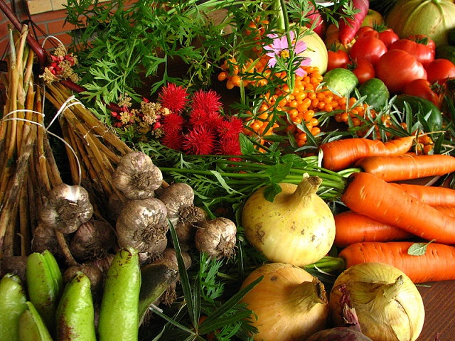 Elina Mark_800px-Ecologically_grown_vegetables.jpg