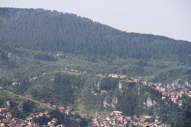 Bjoertvedt_640px-Bosnia_invert_tree_line_IMG_9310_sarajevo_Hrid.jpg
