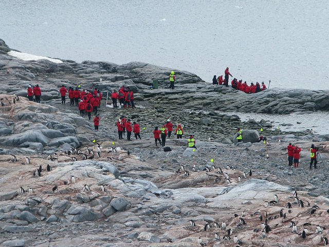 640px-Tourism_in_Antarctica_(Cuverville_island).jpg