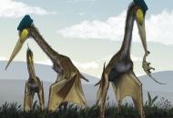 '하늘의 제왕' 세계 최대 익룡들의 사냥터