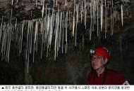기후변화 '나이테' 또렷, 온난화의 '미래' 증언