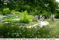 세계적인 식물진화 표본인 울릉식물 파수꾼