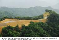 '한반도 가로축' DMZ일대 곳곳 토막 '생태계 분단'