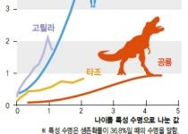 공룡의 생존전략 '청소년기 생존전략, 조류와 닮아'