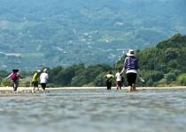 마지막 남은 자연강 섬진강을 걷다